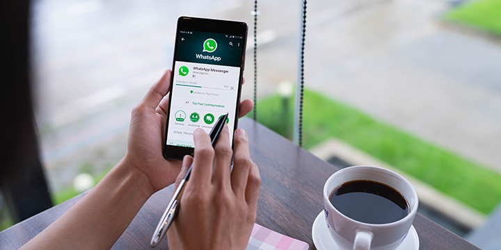 perfil comercial whatsapp business cuy
