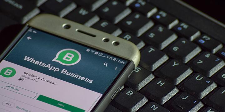 ¿Qué es WhatsApp business y cómo activarlo?