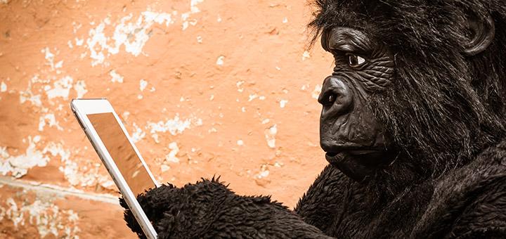 que es gorilla glass